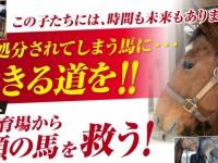 株式会社 馬事学院のプレスリリース画像