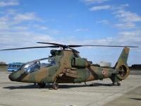 航空祭では陸上自衛隊の観測ヘリコプターOH-1も見学できた