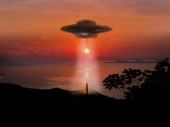 「1週間で3人が宇宙人に誘拐された」と書かれた謎の看板が掲げられたイギリスの森。その真相は?