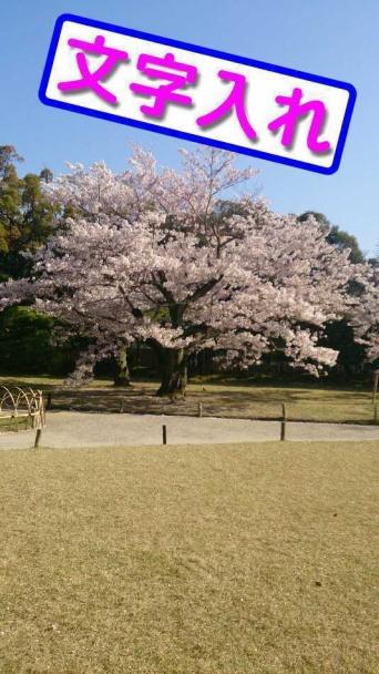 浜田 明志のプレスリリース画像