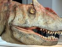 体験型恐竜ライブ「ディノサファリ」の様子(写真:つのだよしお/アフロ)