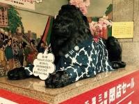 三越千葉店のシンボル、ライオン像(写真はJタウンネット編集部撮影)