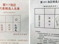 多くの若者が、江沢民やトランプ氏に票を投じた。中には絵を描く器用な有権者も