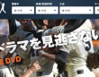株式会社インターナショナルスポーツマーケティングのプレスリリース画像