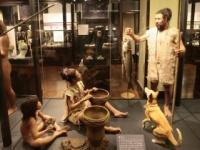 縄文人の死亡原因から驚くべき事実が(写真は国立科学博物館のHPより)