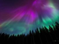 卒業旅行にいかが? 今年こそ見に行きたい「フィンランドのオーロラ」