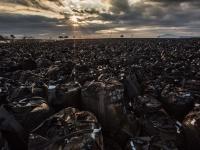 富岡町海岸部、仏浜を埋め尽くすフレコンバッグ(2015年10月)