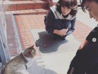 ※画像は『今日から俺は!!』の公式インスタグラムアカウント『@kyoukaraoreha_ntv』より