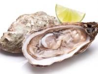 生牡蠣が美味しい季節だが……(shutterstock.com)