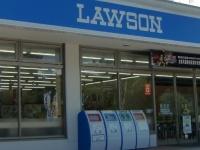 ローソンの店舗(「Wikipedia」より)