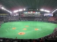 札幌ドーム(「Wikipedia」より)