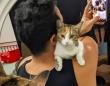 カフェでヒゲメンにロックオンした野良の子猫、毎日アプローチを続け永遠の家族を手に入れる(クウェート)
