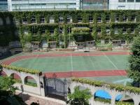 東京都中央区立泰明小学校(「wikipedia」より)