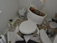 落雷でトイレが爆発!浄化槽内のメタンガスが落雷で発火したことが原因(アメリカ)