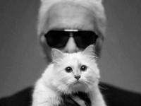 カール・ラガーフェルドと愛猫シュペット