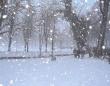 雪が降る街路。写真はイメージ(Stöhrfallさん撮影、Wikimedia Commons