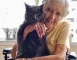 14歳で施設に保護された老猫に最高のパートナーが見つかる。これからはおばあさんと余生を共に(アメリカ)