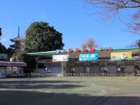 上野動物園(「Wikipedia」より)