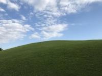 草原...?(画像はヤマキ@Yamaki_82さん