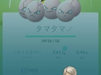 タマタマの大きさは分類できないほどだとか……/『ポケモンGO』ゲーム画面より。
