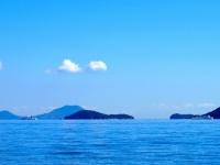 瀬戸内の豊かな海を見るだけでなく食べる(画像はイメージ)