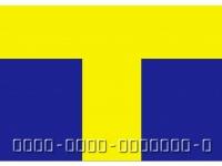 Tカード(「Wikipedia」より)