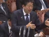 参議院インターネット中継(11月5日)より
