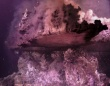 深海2000メートルの熱水噴出孔で形成されていたのは、多様な生物に覆われた鏡のような鉱物の塔(メキシコ)