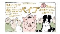 動物たちの名演技にほっこり。 映画『ベイブ』のみどころ #チヤキのおこもりシネマ Vol.10
