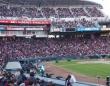 昨季はカープ女子の影響もあり、多くの観客が詰めかけたマツダスタジアム