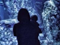 【タイ代理出産】日本人の子どもが高値で取引される人身売買の闇