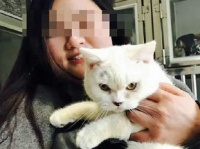 SNSに掲載された、ブリティッシュショートヘアの写真、この猫と一緒に写っているのが飼い主の女だ(出典:南寧電視台)