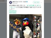 東京ヤクルトスワローズ 公式Twitter(@swallowspr)より