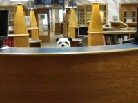 静かなる場所「図書館」なのに思わずクスッとさせられてしまう職員たちのユーモアの数々