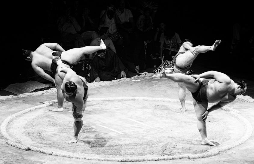 日馬富士の格闘家転向はあるのか? photo by Edward Dalmulder(写真はイメージです)