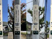 古河の七福カレー プロジェクトのプレスリリース画像
