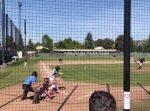 痛いっ…! 野球の試合で、打ったボールがハトに直撃してしまう。