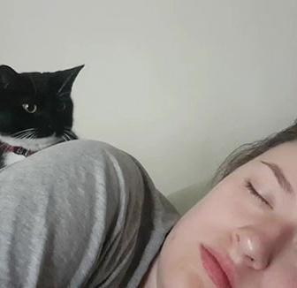 やさしい肉球の使い方。毎朝飼い主を起こすときの猫のソフトタッチがかわいらしい