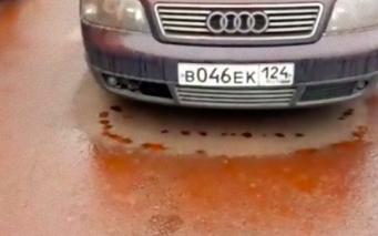 ロシアに降り注いだ血のような赤い雨。黙示録的な何かが近づいているのか?と話題に