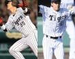 2017年にブレイクする阪神の若手野手はこの2人だ!