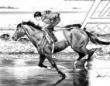 奇跡のジョッキー!人馬一体の少年が魅せる感動の競馬ドラマ『Gの蹄音』をご紹介!