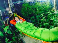 人は植物が排出する酸素だけで生きられるのか?気密テントに植物を入れて過ごしてた男性が危機的状況に(カナダ)