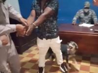 飼い主が警察に連行されるも、犬が必死の説得交渉で釈放に。コロナ外出違反(ドミニカ共和国)