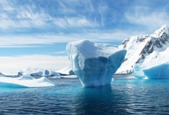 北極海の海の底でクラミジアの近縁種を発見(スウェーデン・オランダ共同研究)