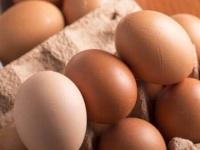 """アレルギーも解消?キユーピーが大豆を使った""""代替卵""""開発で広がる期待"""