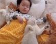 猫と赤ちゃんの優しい時間「可愛い可愛い妹ニャ!」と、少女を見守る5匹の保護猫たち