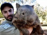 だってオーストラリアだから。オーストラリアの巨大な7つの生物たち(※クモ・ワニ出演中)