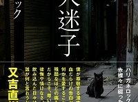 『芸人迷子』(扶桑社)