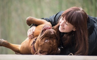 実際のところ犬は人間のことをどう思っているのだろう?脳スキャンで明らかになった犬の本音は、「それでも人間を愛してる」。(各国研究)