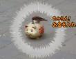 鳥を調教できるものはお金持ちになれる。貯金箱にお金を回収する鳥(中国)